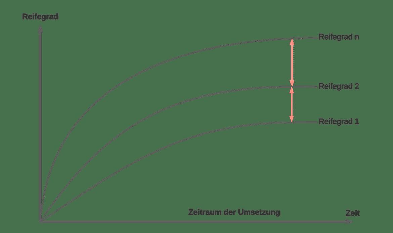 Management Dokumentation Reifegrad | SMCT MANAGEMENT